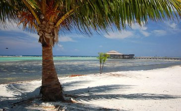 Cay Resort im Glovers Riff Atoll