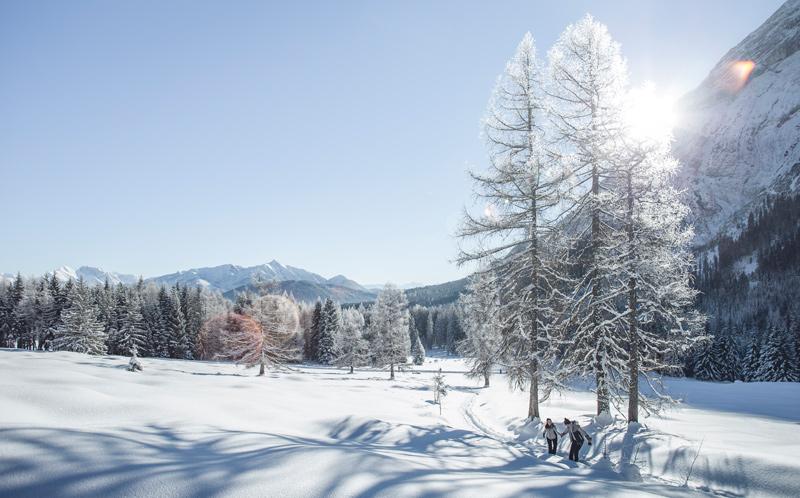 Winterlandschaft am sonnigen Hochplateau - © Olympiaregion Seefeld