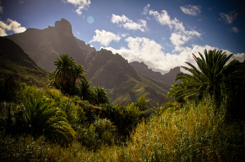 Subtropische Berglandschaft in Gran Canaria, mit Panorama auf die einzigartige Natur