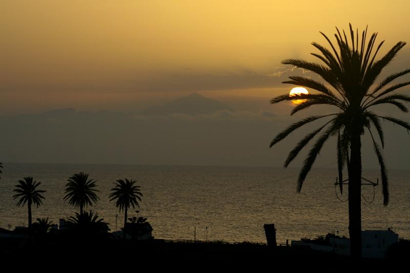Schönste Sonnenuntergänge und -aufgänge in Gran Canaria. Sonne steht tief am Horizont über dem Meer und färbt den Himmel gelb, im Vordergrund sind Palmen zu sehen