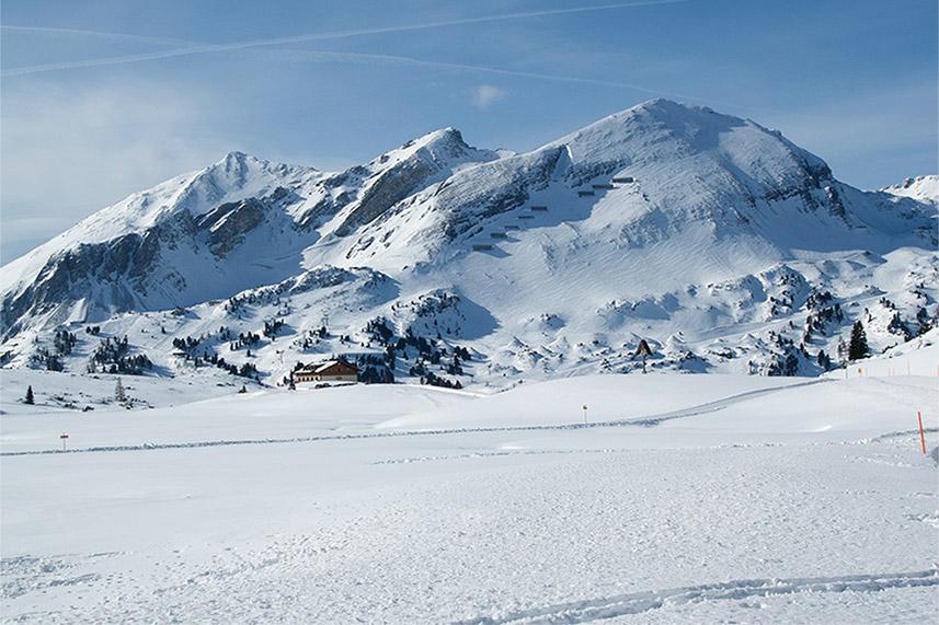 Winter Destination